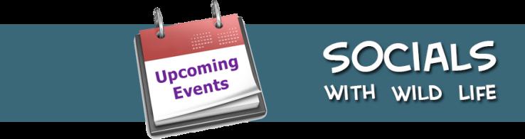 socials special events upcoming