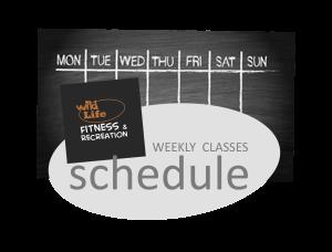 schedule tab