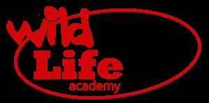 wl academy elipse large