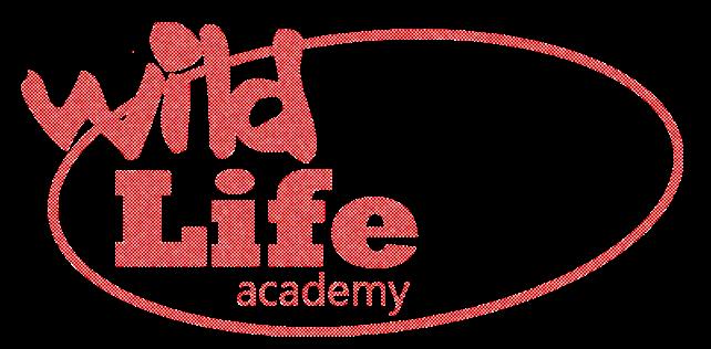 wl academy pix