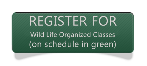 WL fitness registration